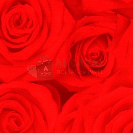 papel de regalo con rosas rojas