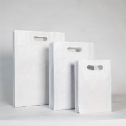 Bolsa de papel blanca, asa troquelada, color blanco.